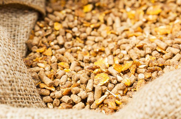 Τα ένζυμα και η βιομηχανία σύνθετων ζωοτροφών