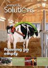 Issue-17-Ruminants-1