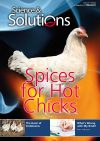 Issue-31-Poultry-1