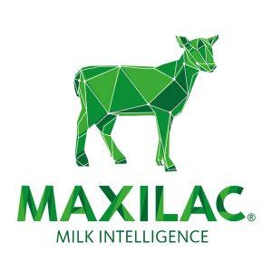 Maxilamb