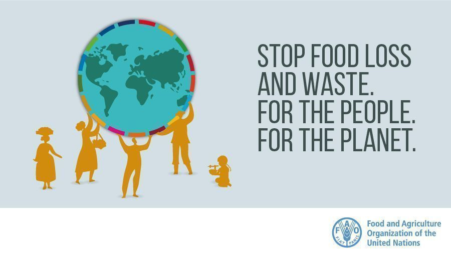 International Day Against Food Losses and Food Waste